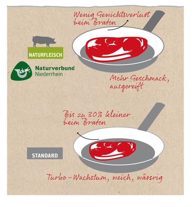 Naturverbund_Infografik-Gewicht_Plakat2016122.indd